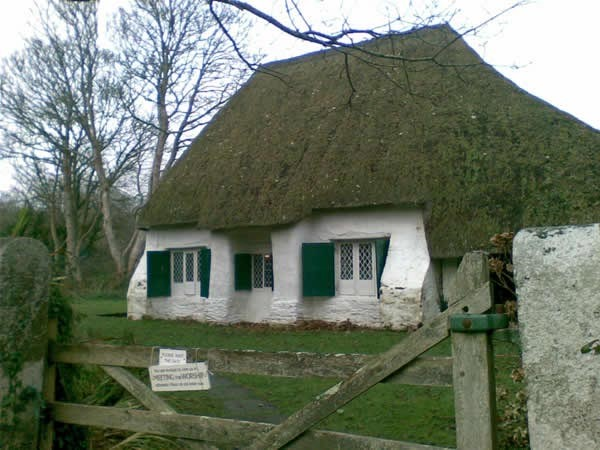 Thatched white-walled cottage